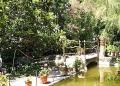 Mallorca-Son-Marroig-Garten-Teich-120x86