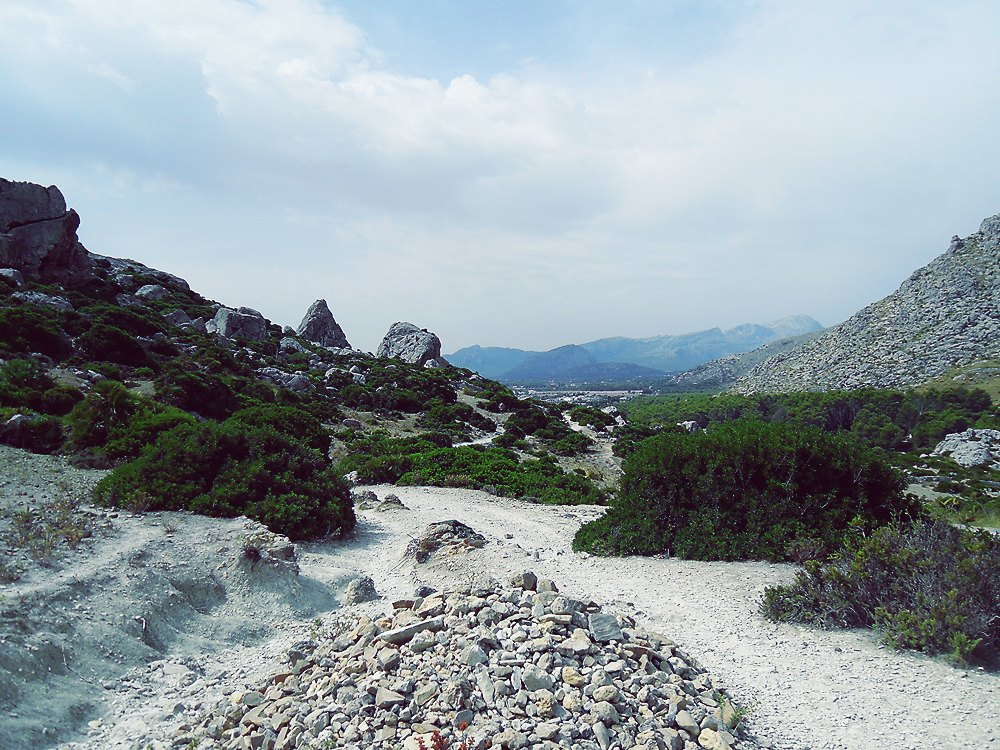 Cala-Boquer-Insel