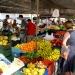 Wochenmarkt-Pollenca