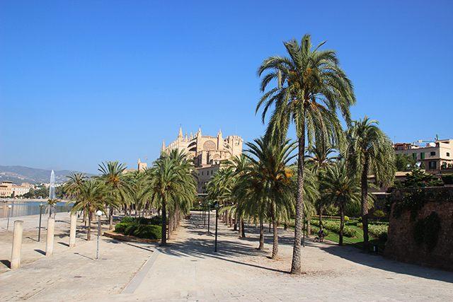 Kathedrale-La-Seu-Palma