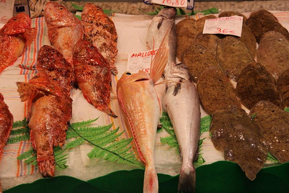 Palma-Markthalle-Fisch