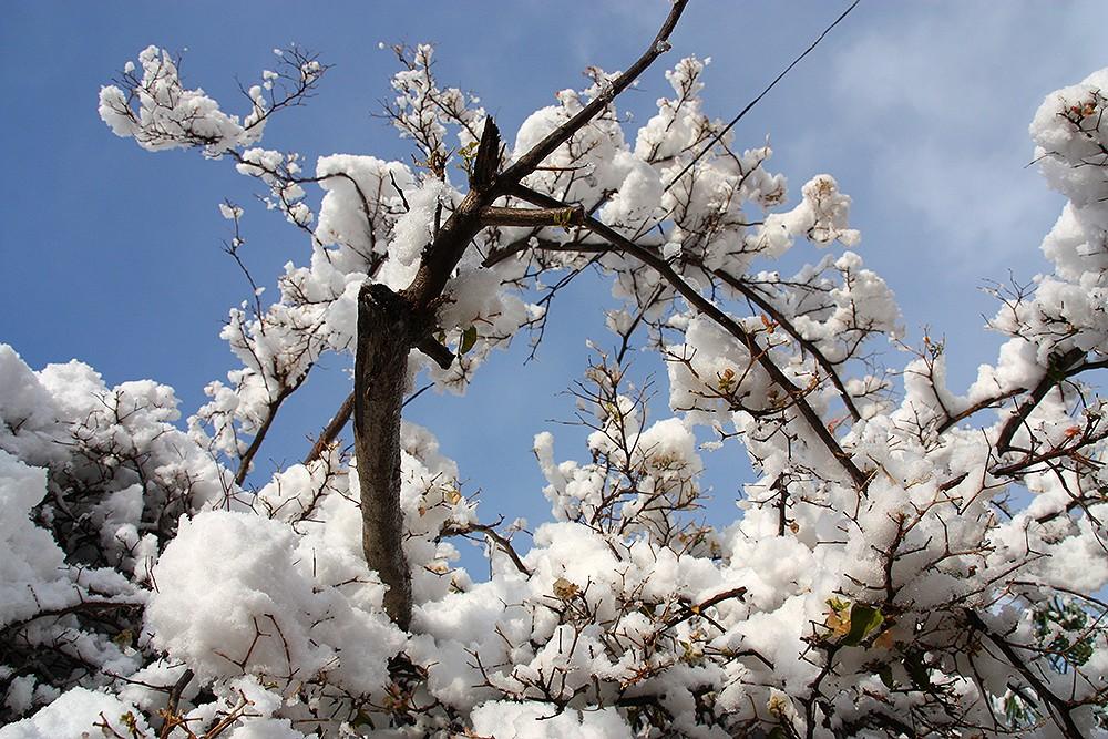 Mallorca-Andratx-Winter-Schnee