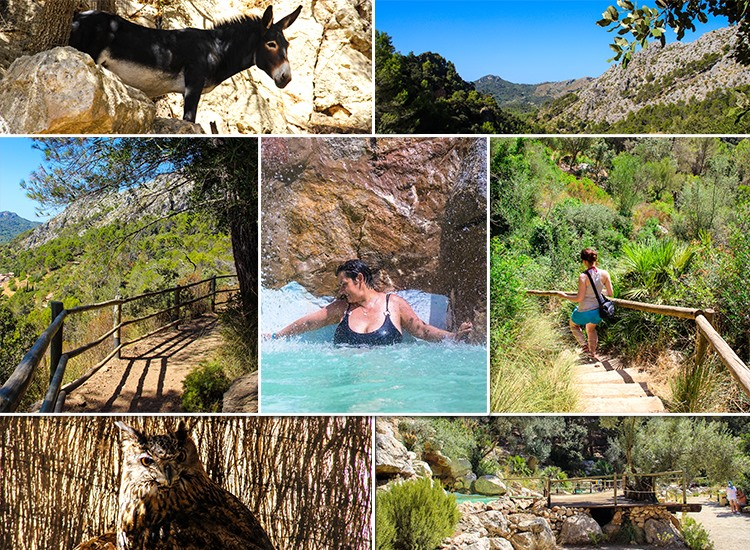Mallorca-La-Reserva-Puig-de-Galatzo-Wandern-Baden-Natur