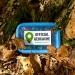 Geocaching auf Mallorca macht viel Spaß und sorgt dafür, dass man einige neue Orte kennenlernt | Settergren / Pixabay