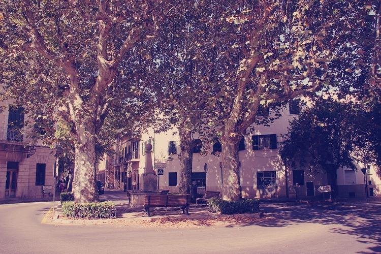 Mallorca-Soller-Platz-Bank-Strasse