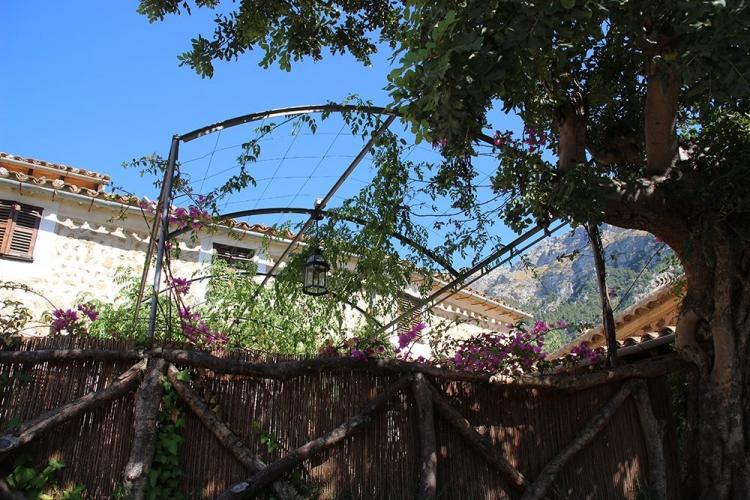 Mallorca-Deia-Garten-Blumen-Himmel-Baum