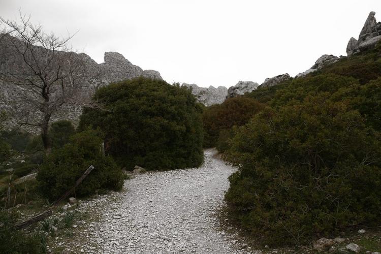 Mallorca-Cala-Boquer-Natur-Felsen