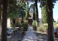 Mallorca-Friedhof-Deia-Baeume-120x86