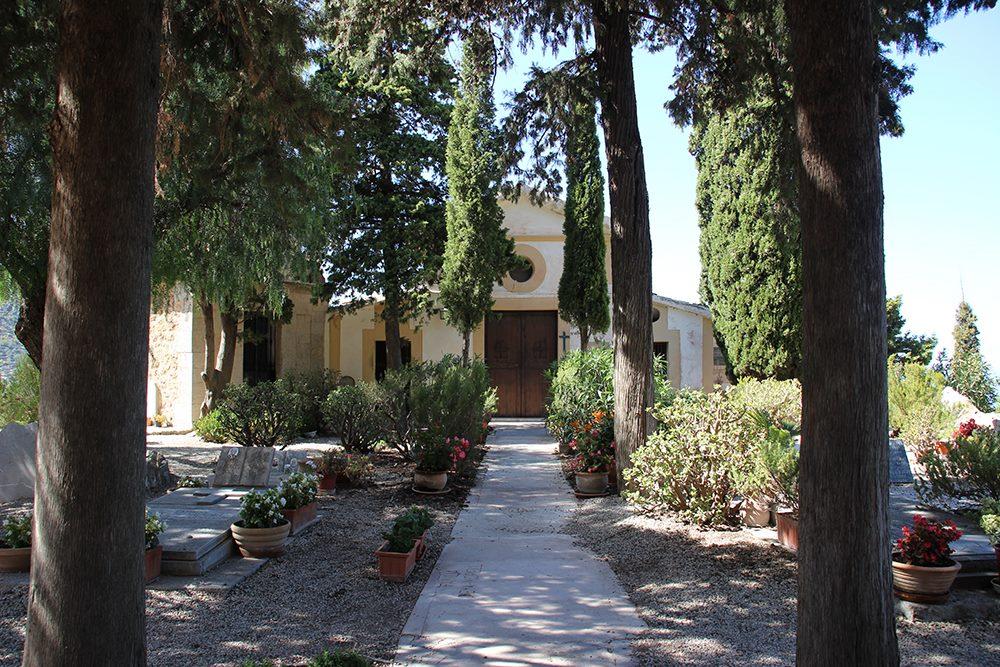Mallorca-Friedhof-Deia-Baeume