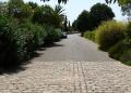 Mallorca-Biniagual-Strasse-Weg-120x86