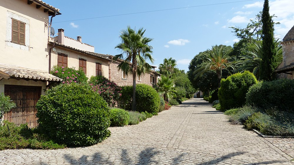 Mallorca-Biniagual-Weg-Haeuser-Pflanzen