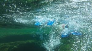 Mallorca-Meer-Tauchen-Flossen-300x169