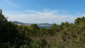 Mallorca-Sa-Coma-Natur-Strand-Meer-300x169