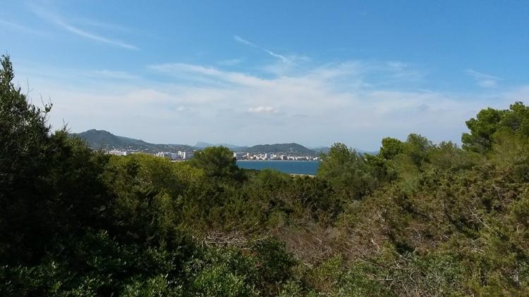 Mallorca-Sa-Coma-Natur-Strand-Meer