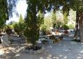 Mallorca-Deia-Friedhof-Baeume-Graeber-120x86