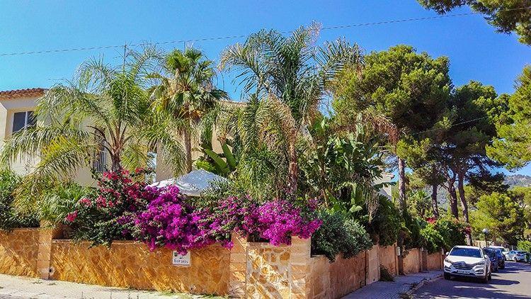 Mallorca-Canyamel