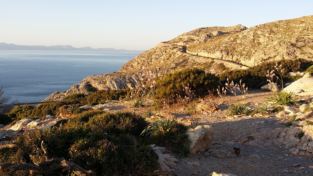 Cap-Formentor-Sonnenaufgang-Felsen-Meer