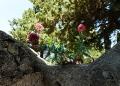 Deia-Mallorca-Friedhof-2-120x86