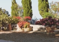 Mallorca-Deia-Friedhof-Graeber-2-120x86