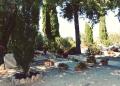 Mallorca-Deia-Friedhof-Graeber-3-120x86