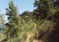 Mallorca-La-Victoria-Wandern-Geocachen-1-120x86