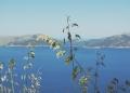 Mallorca-La-Victoria-Wandern-Geocachen-Meer-Aussicht-10-120x86