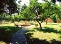 Mallorca-Biniagual-Baeume-Platz-verwunschen-120x86