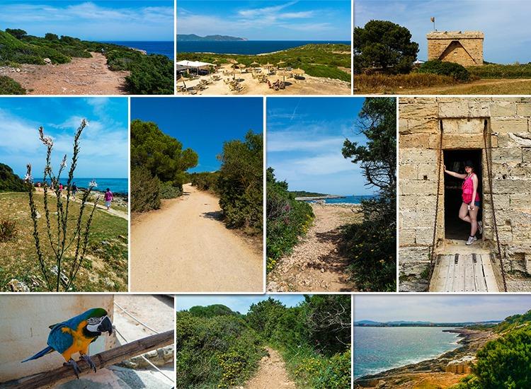 Mallorca-Sa-Coma-Cala-Millor-sa-Punta-de-nAmer-Burg-Ausblick-Meer-2