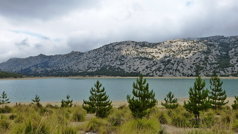 Mallorca-Stausee-Cuber-Wasser-Berge-Baeume
