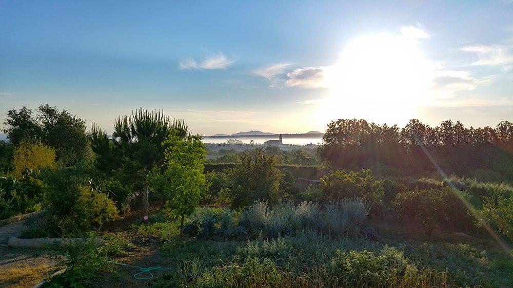 Mallorca-Finca-Petra-Morgen-Nebel