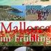 Mallorca-Fruehling-Tipps