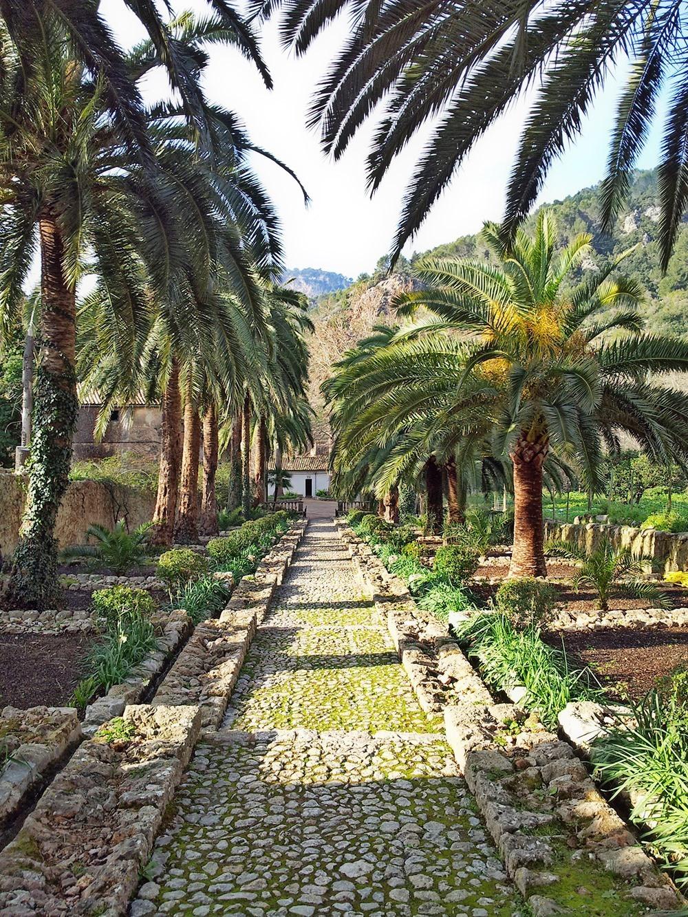 Mallorca-Arabische-Gaerten-Palmen-Weg