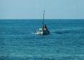 Mallorca-Palma-Portixol-Meer-Boot-Ausflug-3-120x86