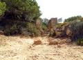 Mallorca-Calo-des-Moro-Strand-Weg-120x86