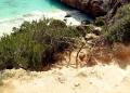 Mallorca-Calo-des-Moro-Strand-Weg-Abstieg-120x86