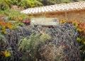 Mallorca-Calo-des-Moro-Strand-Weg-Schild-120x86