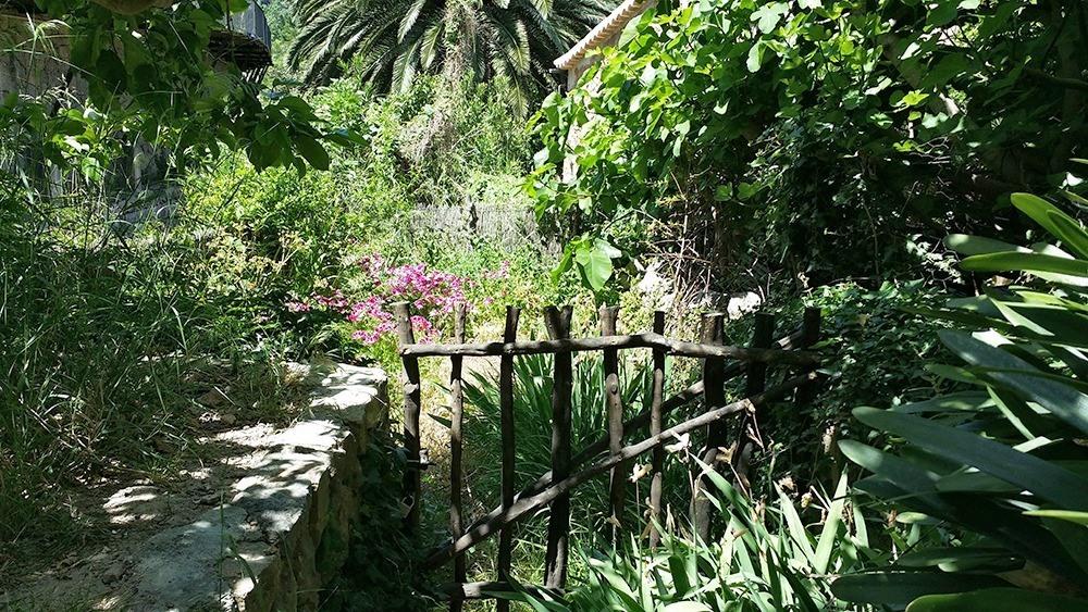 Mallorca-Deia-Garten