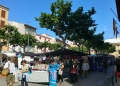 Mallorca-Markttag-Alaro-2-120x86