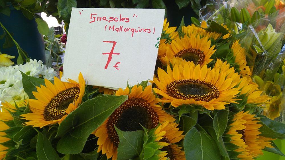 Mallorca-Markttag-Alaro-Sonnenblumen
