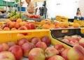 Mallorca-Markttag-Alaro-Stand-Verkauf-120x86