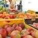 mallorca-markttag-alaro-stand-verkauf
