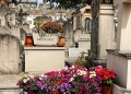 Mallorca-Palma-Friedhof-Blumen-120x86