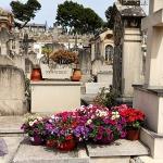 Mallorca-Palma-Friedhof-Blumen-150x150