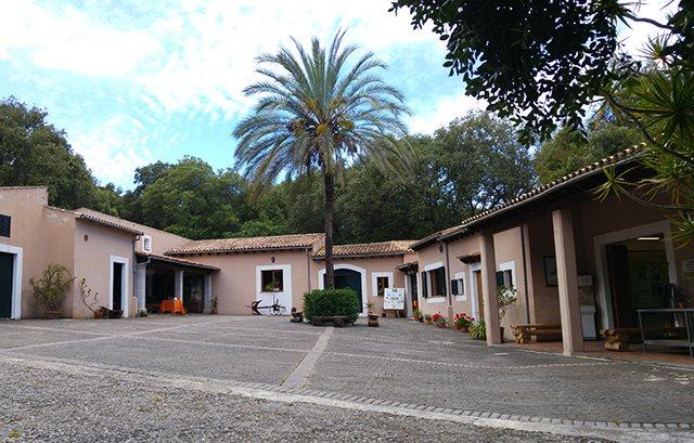 Geierfarm-Mallorca-2