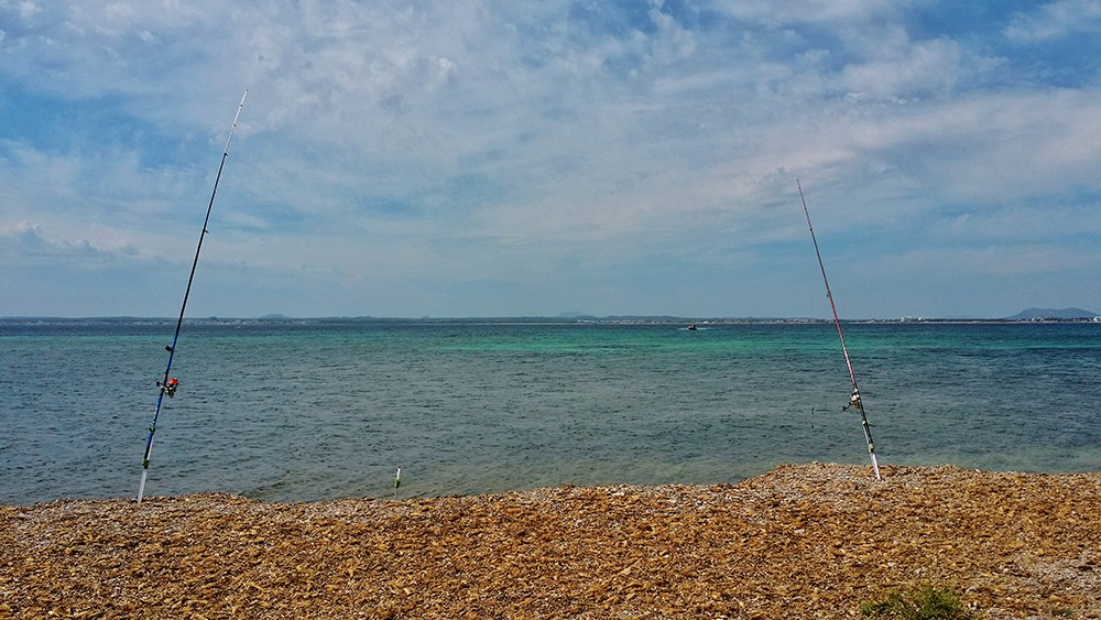Mallorca-Alcanada-Strand-Algen-Angeln