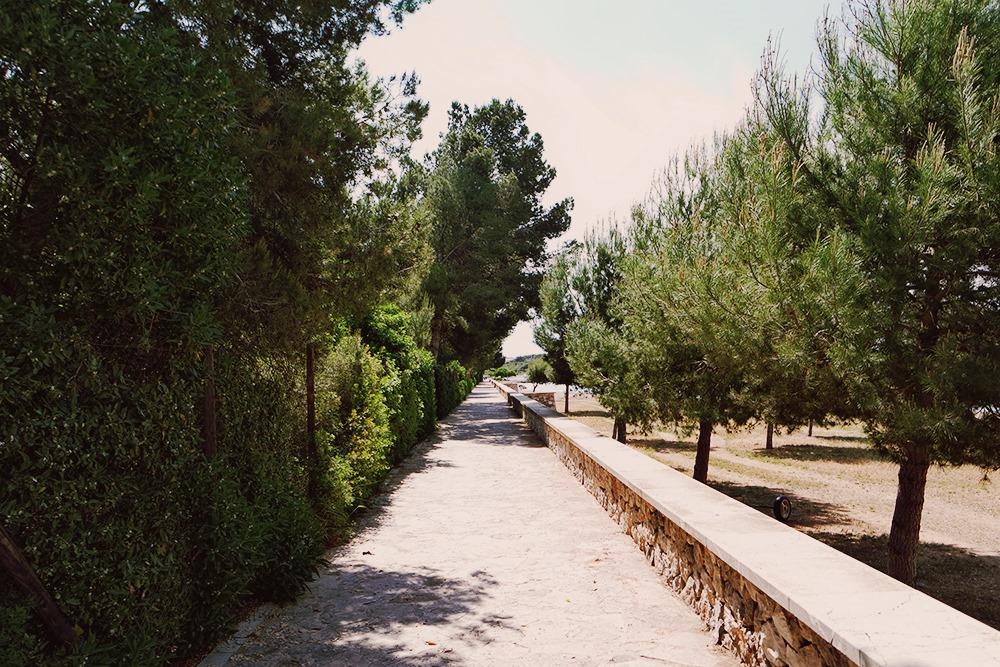 Mallorca-Alcanada-Strand-Weg