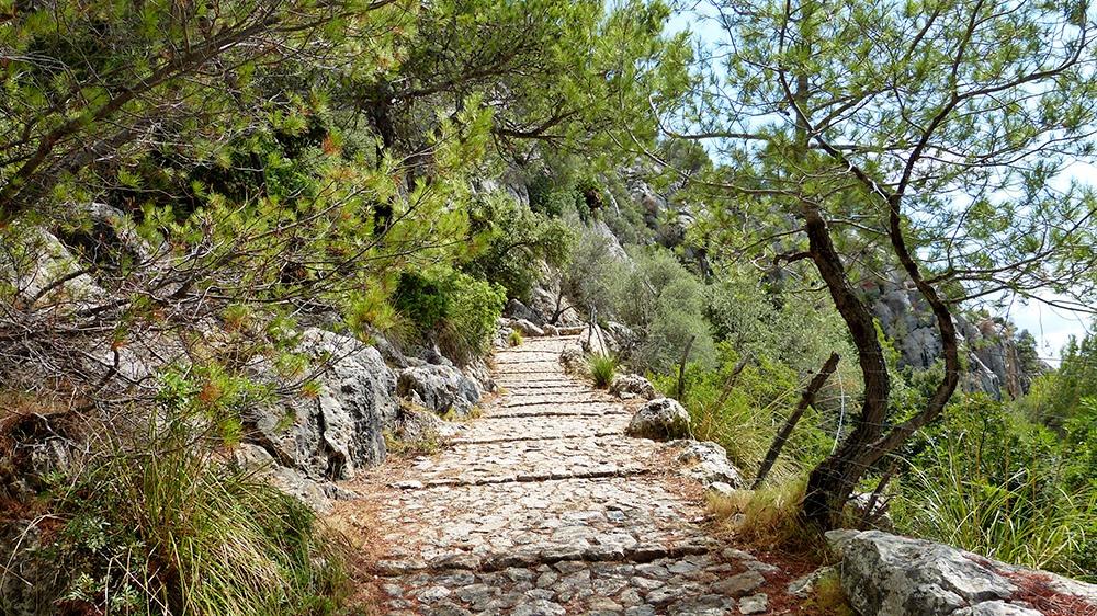 Mallorca-Puig-de-Maria-Wanderung-Aufstieg-Treppen