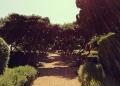 Mallorca-Palma-Marivent-Gaerten-3-120x86