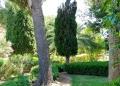 Mallorca-Palma-Marivent-Gaerten-Weg-2-120x86