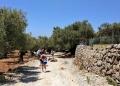 Mallorca-Sa-Foradada-Wanderung-Esel-Weg-120x86